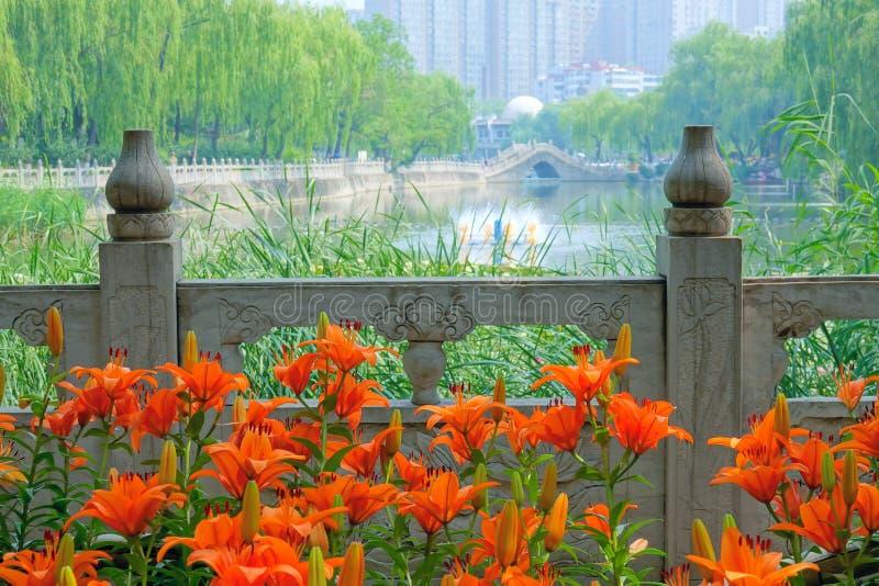 Paesaggio del parco della citt? fotografia stock libera da diritti