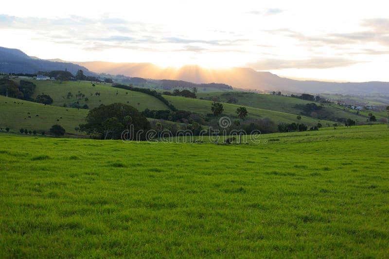 Paesaggio del prato fertile al tramonto immagine stock libera da diritti