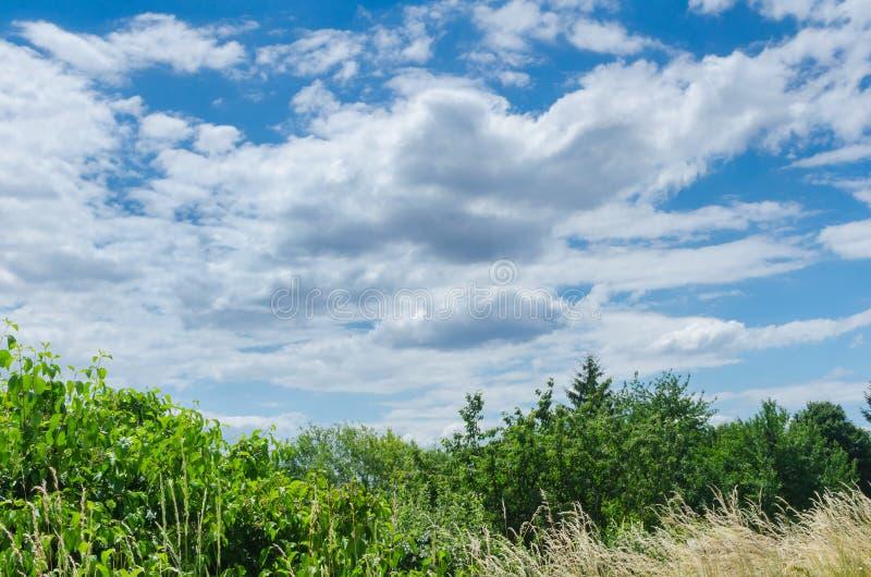 Paesaggio del tempo giusto di estate immagini stock libere da diritti