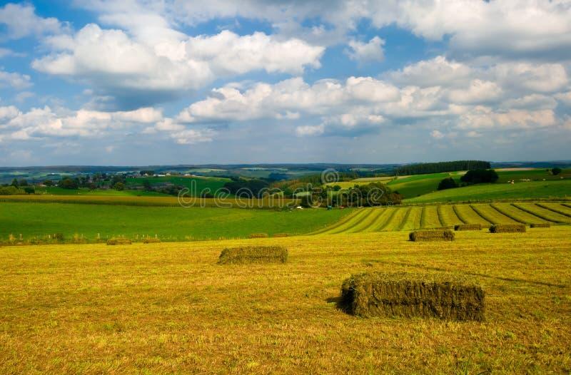 Paesaggio del terreno coltivabile immagine stock
