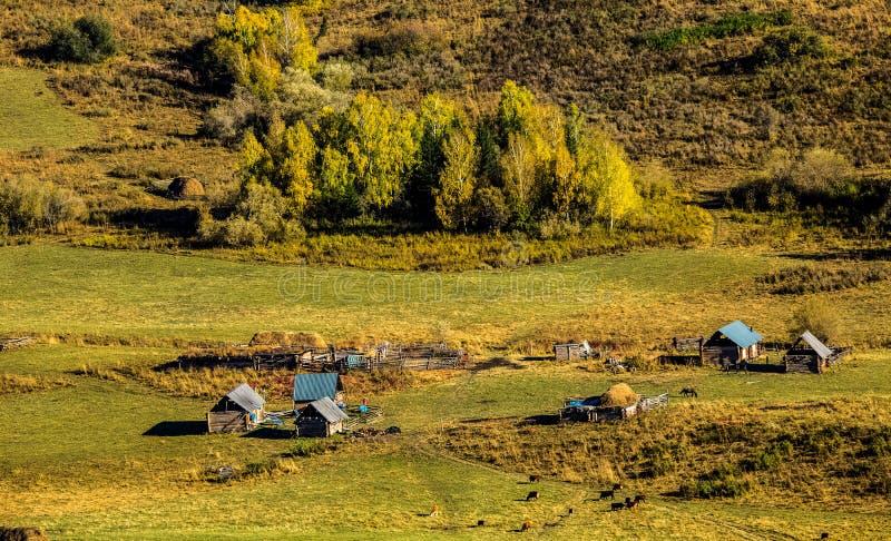 Paesaggio del villaggio di Hemu dello Xinjiang fotografia stock