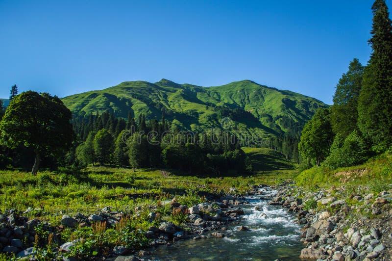 Paesaggio dell'Abkhazia fotografie stock