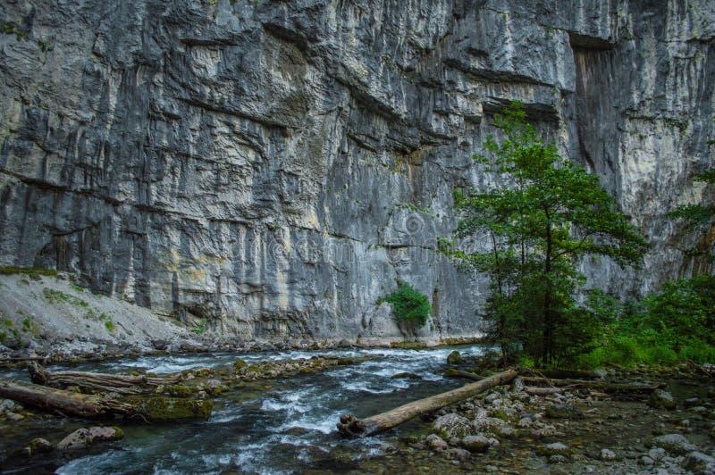 Paesaggio dell'Abkhazia fotografia stock libera da diritti