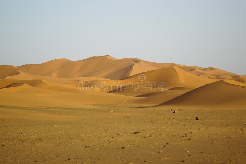 Paesaggio dell'Africa immagini stock