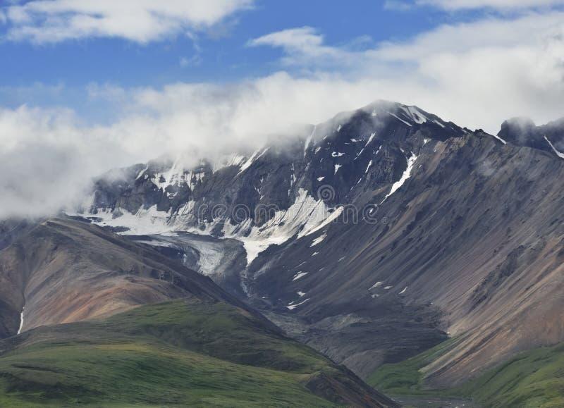 Paesaggio dell'Alaska nel parco nazionale di Denali immagini stock