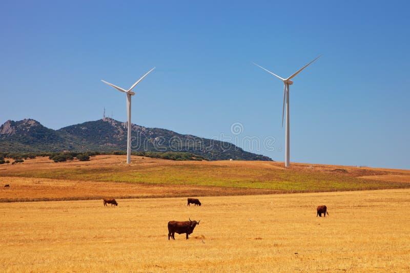Paesaggio dell'Andalusia immagine stock