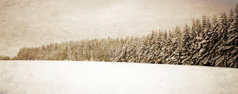 Paesaggio dell'annata di inverno fotografia stock