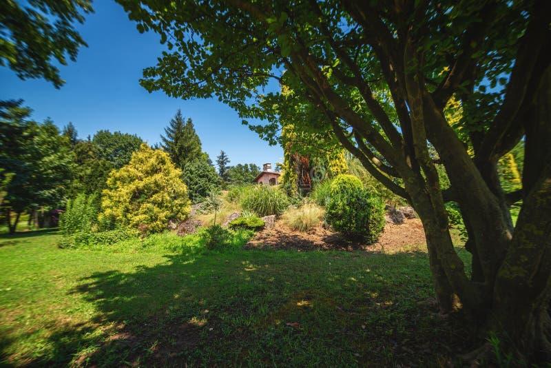 Paesaggio dell'arboreto di Karaca in Yalova, Turchia, con le piante Mediterranee immagine stock
