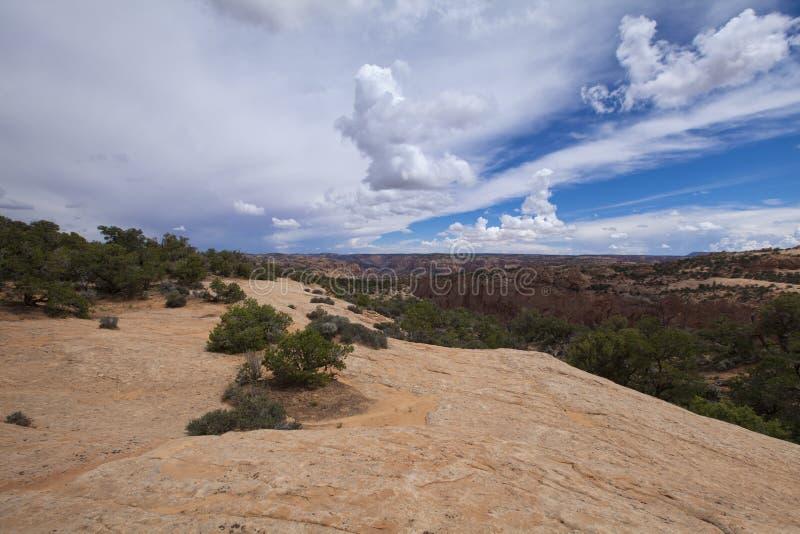 Paesaggio dell'Arizona fotografie stock libere da diritti