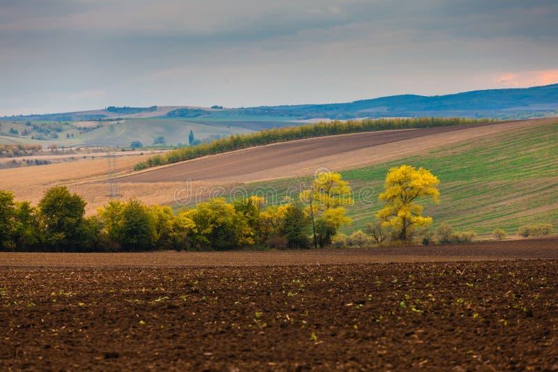 Paesaggio dell'azienda agricola in Moravia del sud fotografia stock libera da diritti