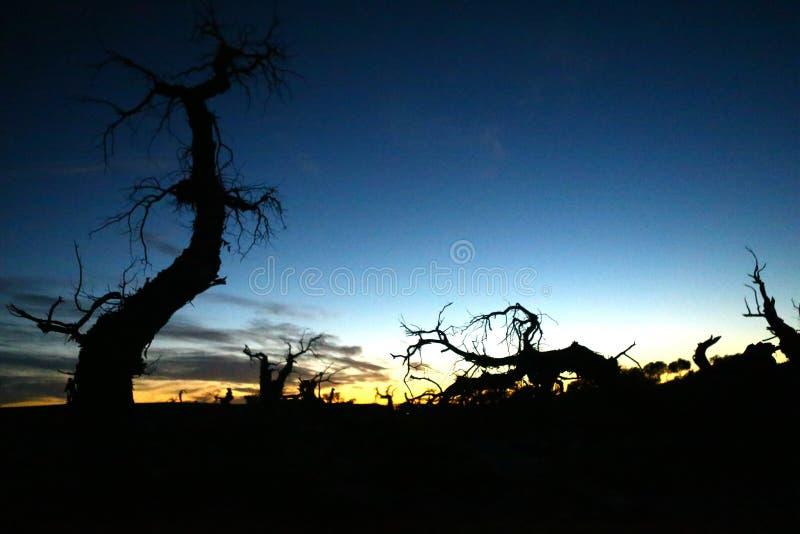 Paesaggio dell'insegna di Ejin fotografie stock