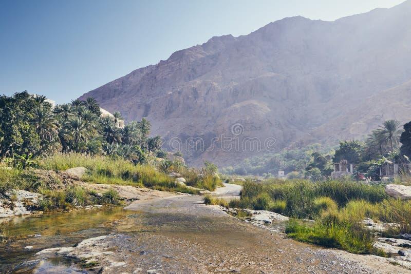 Paesaggio dell'Oman fotografia stock