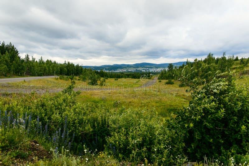 Paesaggio della campagna di estate un giorno nuvoloso fotografia stock libera da diritti