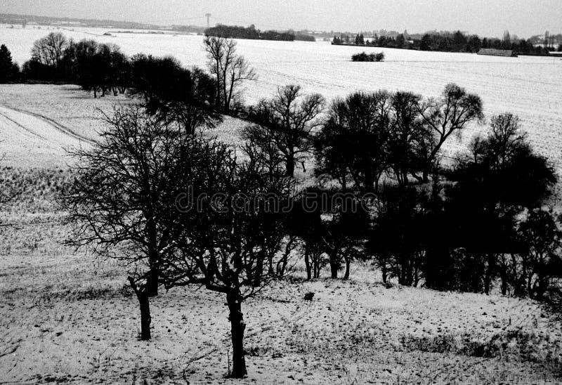 Paesaggio della campagna di Snowy immagine stock libera da diritti