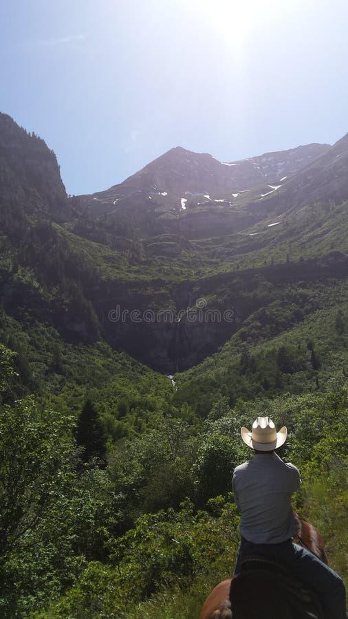 Paesaggio della cascata dell'Utah fotografia stock libera da diritti