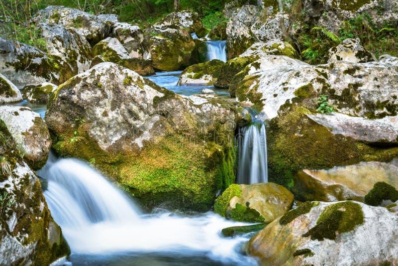 Paesaggio della cascata della torrente montano, Asturie fotografia stock