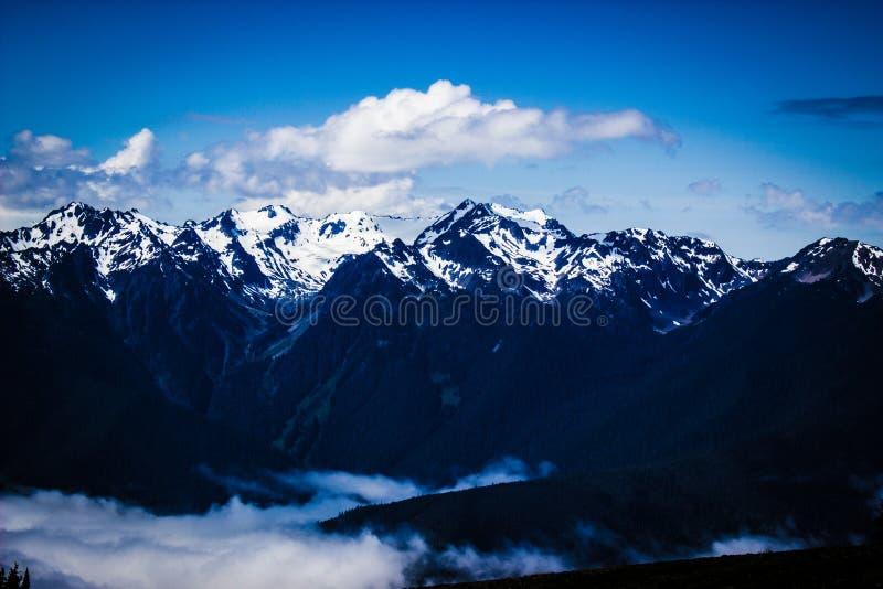 Paesaggio della catena montuosa di Ridge di uragano in parco nazionale olimpico immagine stock libera da diritti