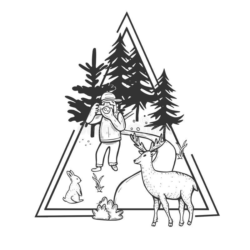 Paesaggio della foresta della natura della fauna selvatica illustrazione di stock