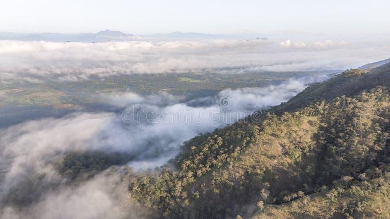 Paesaggio della foschia di mattina con lo strato della montagna a nord della Tailandia fotografia stock libera da diritti