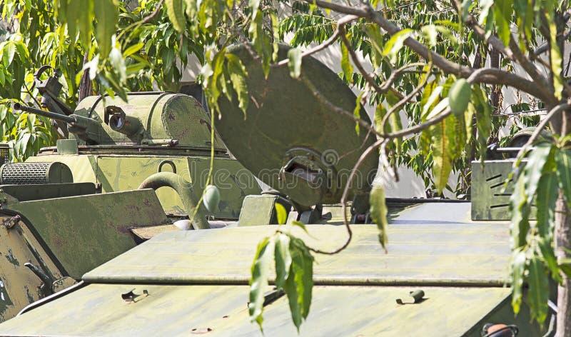 Paesaggio della giungla compreso un vecchio carro armato immagine stock libera da diritti