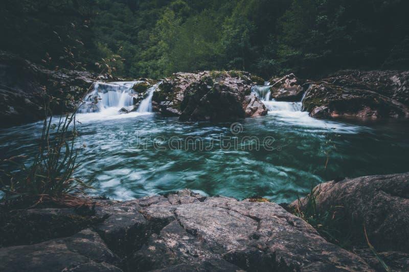 Paesaggio della giungla con acqua scorrente del turchese fotografia stock libera da diritti