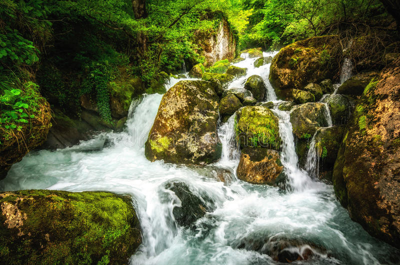 Paesaggio della giungla con acqua scorrente del turchese della cascata georgiana della cascata alla montagna verde-cupo della for fotografia stock libera da diritti