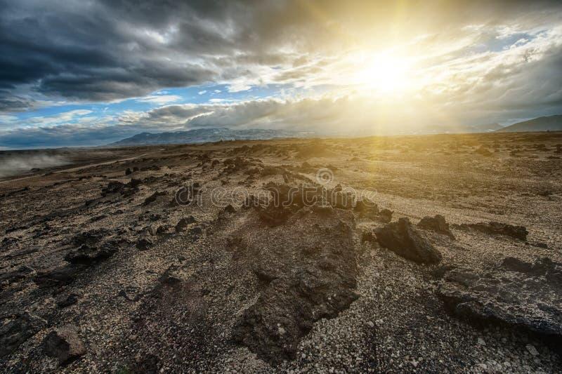 Paesaggio della lava dell'Islanda fotografia stock