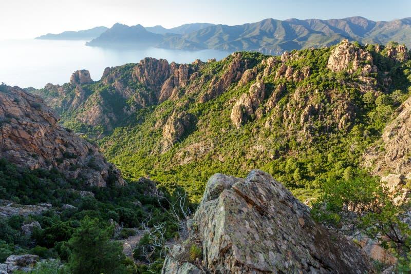 Paesaggio della linea costiera dell'isola di Corsica immagine stock libera da diritti