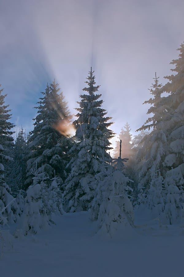 Paesaggio della montagna; fotografia stock