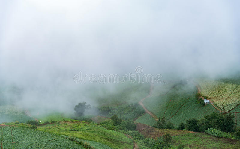 Paesaggio della montagna con foschia e cloudscape fotografia stock