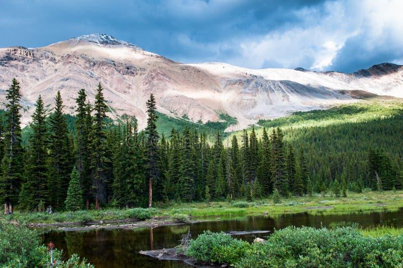 Paesaggio della montagna con il piccolo stagno nel parco nazionale di Banff fotografia stock