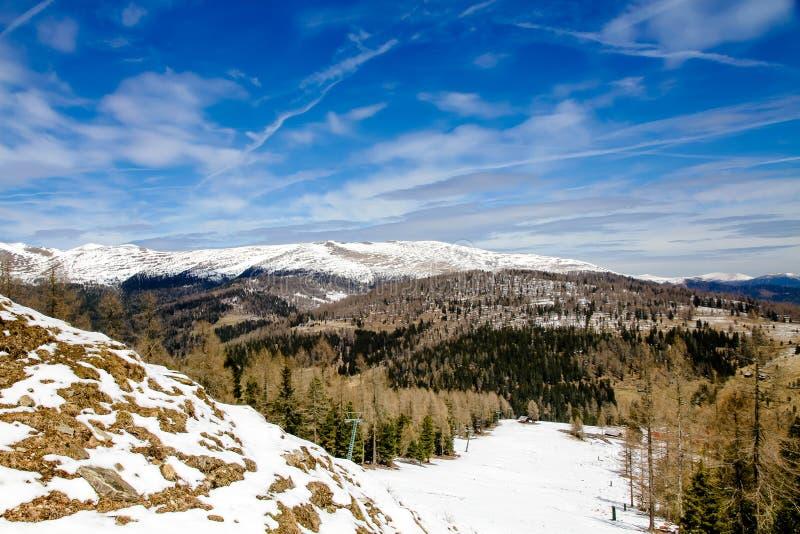 Paesaggio della montagna con l'abete rosso e pini e terreno coperti da neve in un'area dello sci nelle alpi austriache immagini stock