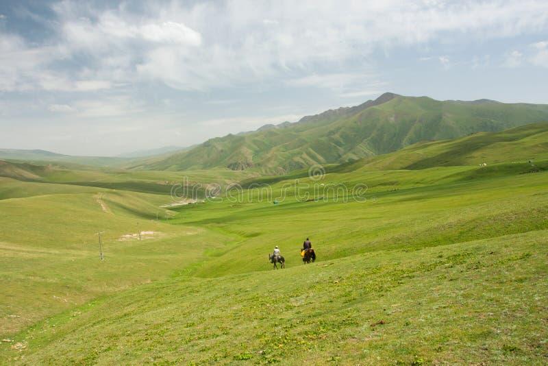 Paesaggio della montagna con la valle ed i cavalieri dell'erba verde a cavallo fotografia stock libera da diritti
