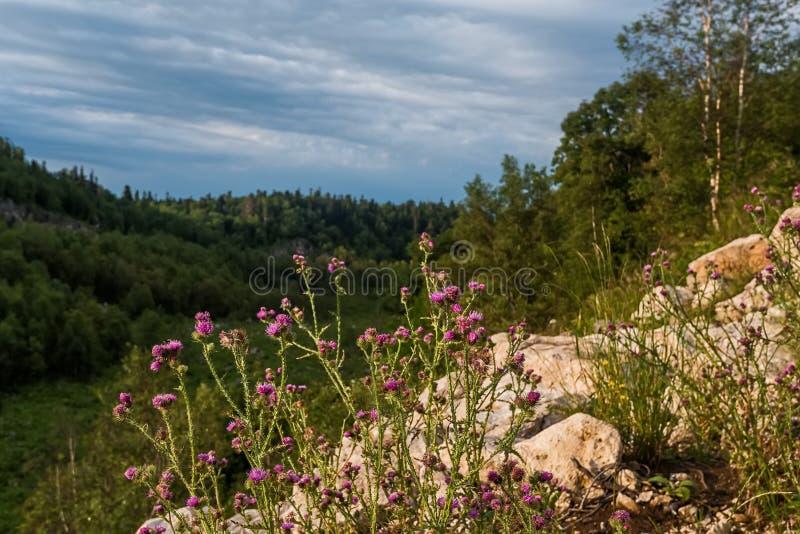 Paesaggio della montagna in Dagestan fotografie stock
