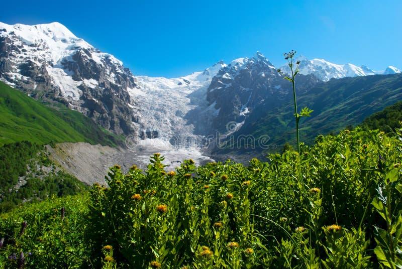 Paesaggio della montagna del ghiacciaio, Georgia fotografie stock