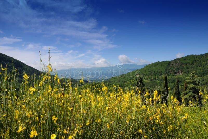 Paesaggio della montagna dell'Italia fotografia stock