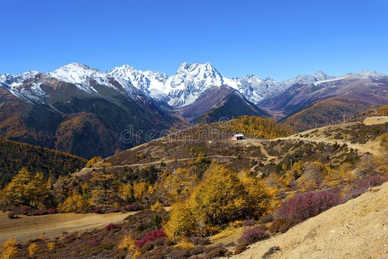Paesaggio della montagna della neve di Haba in Cina all'autunno fotografie stock