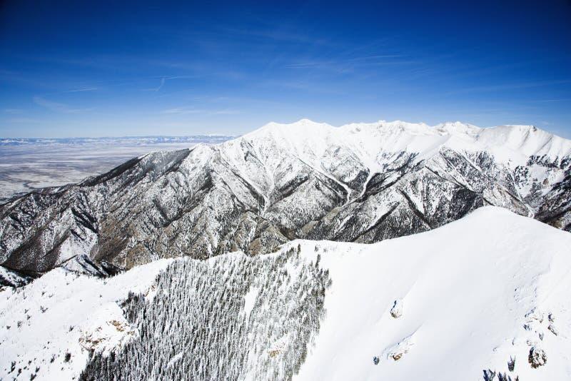 Paesaggio della montagna dello Snowy, Colorado. immagine stock libera da diritti