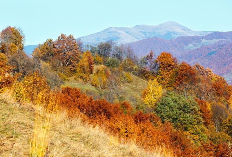 Paesaggio della montagna di Autumn Carpathian, Ucraina fotografia stock
