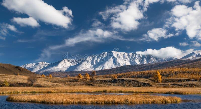 Paesaggio della montagna di autunno Cime della montagna della neve con il cielo nuvoloso blu e la valle gialla con il larice immagini stock