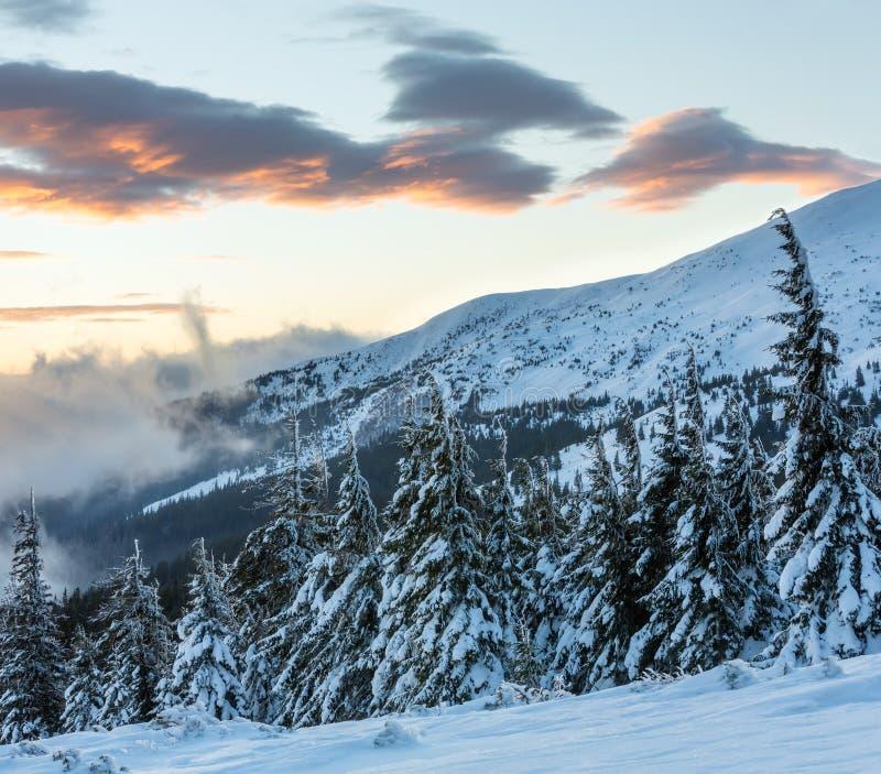Paesaggio della montagna di inverno di alba (carpatico) immagine stock libera da diritti