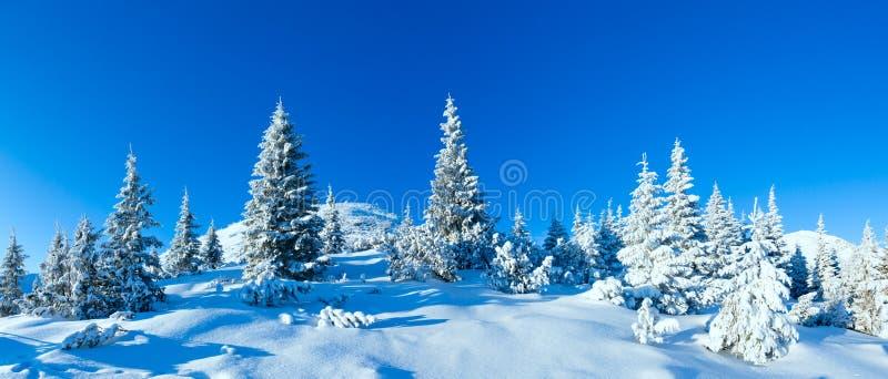 Paesaggio della montagna di inverno di mattina (carpatico, Ucraina) fotografie stock libere da diritti