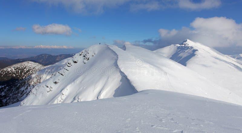 Paesaggio della montagna di inverno - Tatras basso immagini stock