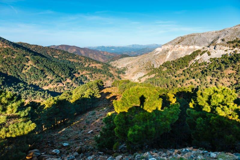 Paesaggio della montagna di Sierra de las Nieves, Andalusia, Spagna immagine stock