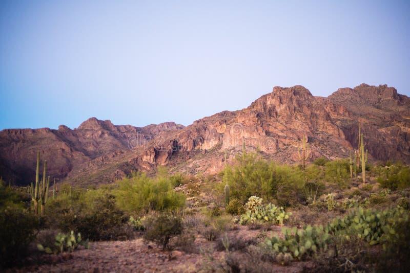 Paesaggio della montagna di superstizione nel deserto dell'Arizona fotografie stock