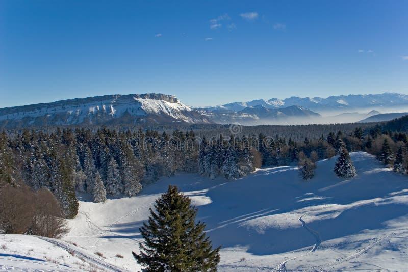 Paesaggio della montagna durante l'inverno immagini stock libere da diritti