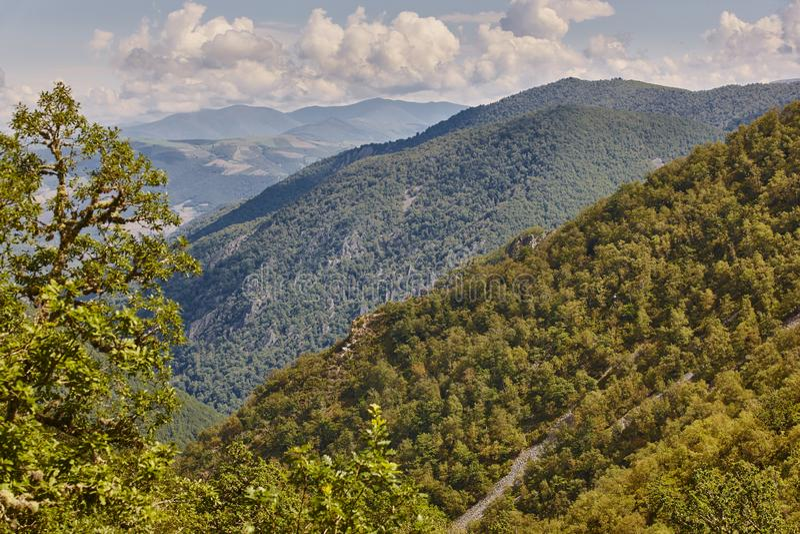 Paesaggio della montagna della foresta della quercia in Spagna Parco naturale di Muniellos fotografia stock libera da diritti