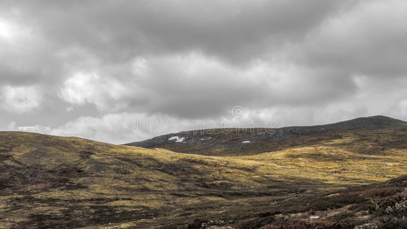 Paesaggio della montagna in Norvegia immagini stock