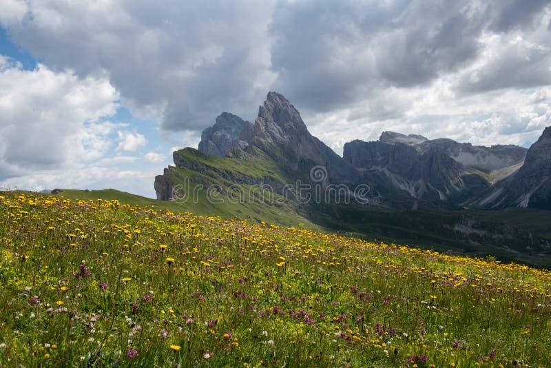 Paesaggio della montagna in Seceda L'Italia fotografia stock