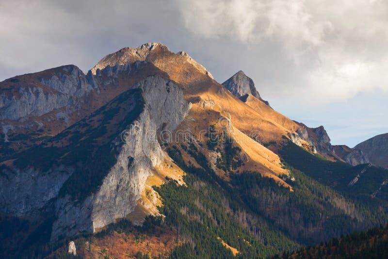 Paesaggio della montagna, Tatry fotografie stock libere da diritti